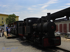 (cod_gabriel) Tags: steam romania bucharest steamengine bucuresti rumania romenia narrowgauge romênia bukarest roumanie boekarest bucarest roménia ルーマニア narrowgaugerailway romanya rumänien roemenië rumænien rumanía românia bucureşti רומניה rumunia mocanita románia румыния bucareste 羅馬尼亞 رومانيا 루마니아 ρουμανία rumunjska रोमानिया رومانی ประเทศโรมาเนีย mocăniţa mocăniţă