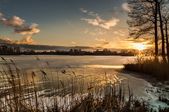 Biting wind (piotrekfil) Tags: trees winter sunset sky sunlight lake snow reflection ice nature clouds reeds landscape wind pentax poland piotrfil
