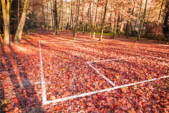 Ephemeral Football. (arturii!) Tags: autumn white field lines forest photoshop carpet vanishingpoint football geometry painted perspective sunny ground imagination unreal leafs edition ephemeral planetree efimero imossible