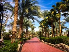 Na'ama Bay (ryanvarley) Tags: egypt sharmelsheikh naamabay