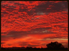 Shepherd's Delight (Zelda Wynn) Tags: sunset red nature weather auckland cloudscape altocumulus troposphere waitakereranges shepherdsdelight zeldawynnphotography