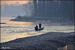 Along the river ............ (alfvet) Tags: sun sunrise river golden barca alba fiume acqua parcodelticino veterinarifotografi
