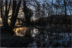 l'étang près de l'abbaye (amateur72) Tags: hiver fujifilm arbre brume givre matin etangs xt1 xf1855mm abbayeduvalasse