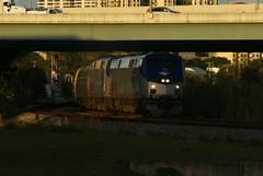 AMTRAK PO97 AT WEST PALM BEACH, FL (railfan1967) Tags: west beach train silver florida palm amtrak passenger ge meteor 163 p42dc