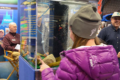Duluth Boat Show - Sea Lamprey Booth (U.S. Fish and Wildlife Service - Midwest Region) Tags: minnesota education midwest greatlakes creativecommons slc outreach usfws partners boatshow invasivespecies region3 dfo usfishandwildlifeservice environmentaleducation midwestregion publicoutreach sealamprey slcp environmentalinterpretation glfc sealampreycontrol sealampreycontrolprogram duluthboatshow