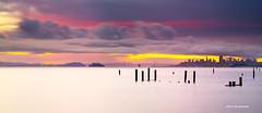 Morning colors - San Francisco bay (davidyu2) Tags: sanfrancisco california usa