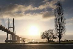 Ponte-8047 (Paulo N. Silva) Tags: