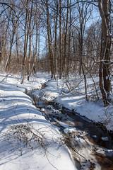 3/6/15 Winter Creek (Karol A Olson) Tags: park snow creek frozen maryland columbia 2015 lakeelkhorn mar15 project3652015 mdpd2015