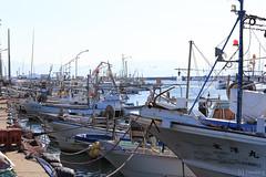 Tsuyazaki fishing port (tomosang R32m) Tags: japan fukuoka   fishingport tsuyazaki fukutsu