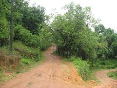 IMG_5423 (Gokul Chakrapani) Tags: waterfalls karnataka westernghats bolle charmadi