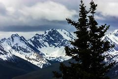 Banff (Canada) (jc.mendo) Tags: mountain canada canon arbol nubes banff pino montaas 550d 55250
