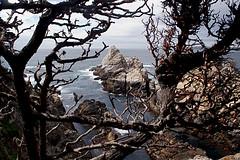 106-point lobos- (danvartanian) Tags: california pointlobos