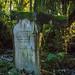 Jackson Bay Pioneer Cemetery- South Westland
