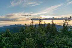 DSC_2507 (czargor) Tags: mountains landscape hill mountainside beskidy inthemountain dogtrekking beskidzywiecki