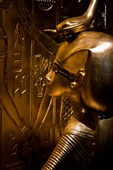 Canopic shrine - Detail (max.fontanelli) Tags: king treasure tomb egypt re tesoro tomba egitto oro tutankhamun pharaon golg faraone
