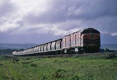 Storm clouds at Snowtown (Bingley Hall) Tags: australia southaustralia transport train transportation rail railway railroad locomotive engine diesel streamliner bulldog geneseewyomingaustralia australiasouthernrailroad australianrailroadgroup arg asr gwa clydeengineering morrisonknudsen mka freight grain snowtown clf1 railpage:class=60 railpage:loco=clf1 rpauclfclass rpauclfclassclf1 railpage:livery=39 emd 645e