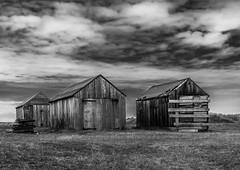 Old sheds (bobbyloomba) Tags: landscape huts wood norfolk blackandwhite