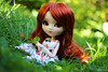 Lucky Clover~ (Local Ghost) Tags: pullip stica