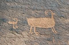 Petroglyph in Kane Creek Canyon (Ron Wolf) Tags: anthropology archaeology blm fremont kanecreekcanyon nativeamerican petroglyph rockart zoomorph utah bighornsheep
