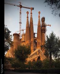 Postal de Barcelona... (Felip Prats) Tags: barcelona barcelons catalunya sagradafamilia capvespre atardecer