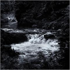 Vintgar Gorge, Bled, Slovenia (mike.read44) Tags: river monochrome gorge bled slovenia rapids landscape moody trees rocks water blackandwhite