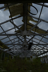 Abandoned (Sarah_Brigham) Tags: abandoned greenhouse structure frame sky storm clouds broken ruins decay plants overgrown lines architecture building rural brokendown fallingapart nikon nikond5200 photography color