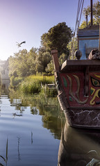 Visitor at sunset. f10; 1/160s; ISO 100; FL35mm.  Juan Manuel Saenz de Santa Mara, 2016 (Brenus) Tags: impresiones lensblr photographers tumblr landscape original ponds storks boats atardeceres