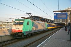 TRAXX 2833