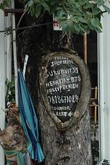 For Rent - Sukhumvit Bangkok (jcbkk1956) Tags: bangkok thailand sukhumvitroad street tree advertising realestate housing nikon nikkor 1870mmf3545 d70s umbrella knot trunk