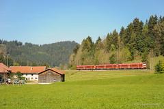 DB REGIO - OBERTHALHOFEN (Giovanni Grasso 71) Tags: oberthalhofen db regio br612 allgu allgubahn nikon d700 giovanni grasso kbs970 automotrice diesel lindau immenstadt