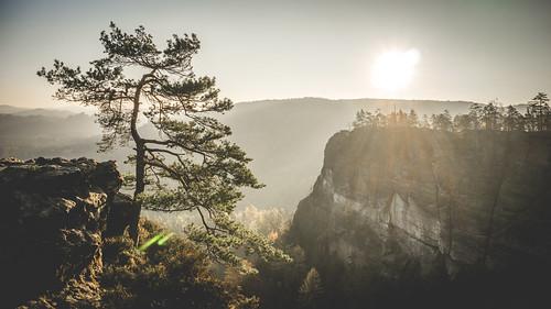 Herbst-Fototour Sächsische Schweiz 2015
