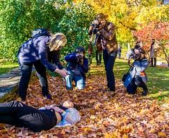 Behind The Scenes ((Jessica)) Tags: leaves bostonportraitmeet autumn portraitmeet foliage seasonal massachusetts seasons trees portrait boston fall arboretum arnoldarboretum photographers newengland
