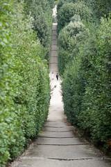 DSC_9928 (AperturePaul) Tags: florence tuscany italy nikon d600 boboli gardens giardinidiboboli park