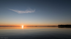 Calm sea (- Man from the North -) Tags: water sky outdoor seaside seascape shore cloud coast seasunset sea sunset beach gulfofbothnia finland westcoast evening sun tree trees forest horizon nikon samyang nikond500 samyang14mmf28 d500 wideangle
