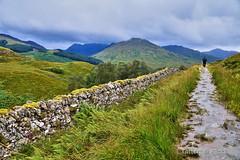 West Highland Way (Tatters ) Tags: scotland whw westhighlandway path stonewall oloneo