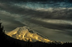 last light.... (Alvin Harp) Tags: mountshasta northerncalifornia california ancientvolcano dormantvolcano volcano sonyilce7rm2 fe24240mm dusk clouds eveningclouds october 2016 nature mountainpeak snowcaps forest mountainforest alvinharp