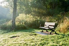 Morning Light (marysmyth(NOLA13) ) Tags: film kodakportra400 park nature toronto bench morning light canoneosiv 135mm edwardsgardenstrail hbm