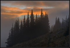 Fire and Fog (Ernie Misner) Tags: fog fire mountrainiernationalpark sunrise sunrisewa washington erniemisner nikon d800 nik lightroom hdr capturenx2 cnx2 f8andwait