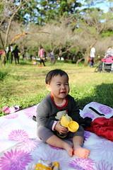 IMG_4821 (Sandor's Album) Tags: 清大 清華大學 國立清華大學 新竹 梅園 nthu nationaltsinghuauniversity hsinchu taiwan 台灣 2016 一月 1月