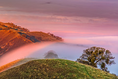 fog flow-Black Diamond  sunrise (Marc Crumpler (Ilikethenight)) Tags: california trees fog clouds sunrise landscape hiking hills bayarea eastbay sfbayarea antioch blackdiamond ebrpd contracostacounty eastbayregionalparkdistrict fogflow marccrumpler