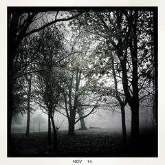Fog_1 (soilse) Tags: cameraphone trees ireland dublin weather misty fog outdoors day foggy mobilephone ucd app cellphonecamera iphone 2014 lightandshade blackeys lowvisibility ultrachrome iphonephoto iphonecamera iphoneapp iphonography foggyconditions hipstamaticapp hipstamaticcamera blackeysultrachrome november2014