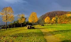 _DSC7093 (andoni.guridi) Tags: autumn fall spain otoño navarra 2014 basaburua