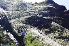 Mt. Teapot  (AllenHsu) Tags: taiwan taipei  awn   2014  ruifang jinguashih    newtaipeicity mtteapot