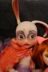 Little Bunny Foo Foo like (stellamaris61) Tags: lilycat loonette