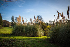 """Tyntesfield • <a style=""""font-size:0.8em;"""" href=""""http://www.flickr.com/photos/32236014@N07/15784454457/"""" target=""""_blank"""">View on Flickr</a>"""