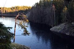Southeastern part of Lake Vääräjärvi icing up (Nuuksio national park, Espoo, 20111120) (RainoL) Tags: november autumn lake ice forest espoo finland geotagged nationalpark u fin nuuksio uusimaa nyland 2011 esbo nuuksionationalpark vääräjärvi 201111 20111120 lakesofnuuksio geo:lat=6030482100 geo:lon=2462118600