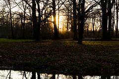 Sonnenuntergang im Englischen Garten