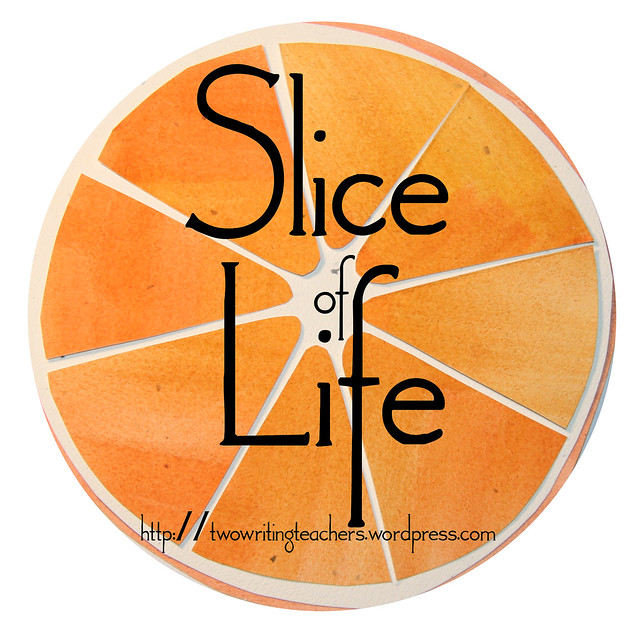Thumbnail for Slice of Life: #25wordstory blast for #sol15