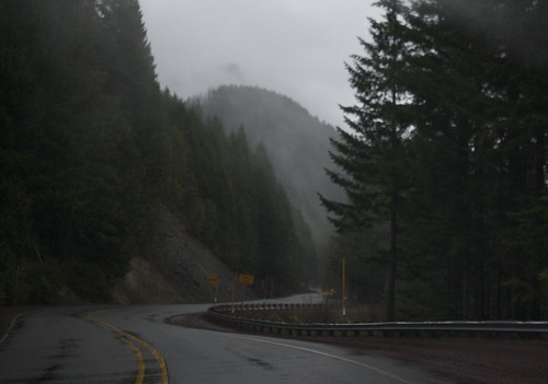 Misty and foggy roads