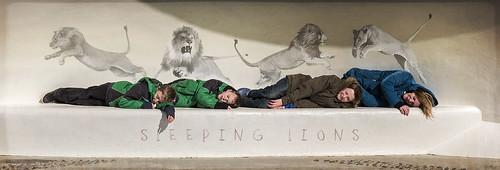 SLEEPING_LIONS